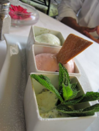 Trio of Ice creams at Bistro 217 on Pawley's Island - photo by Jordan Wright