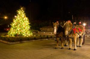The Boar's Head Inn at Christmas - photo courtesy of the inn