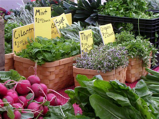 Herbs at the Alexandria Farmers Market - photo credit Jordan Wright