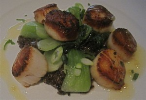 Pan seared sea scallops - photo credit Jordan