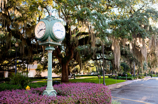 Tally's Historic District - Park Avenue