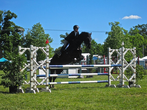 Taking the jumps at the Upperville Horse Show