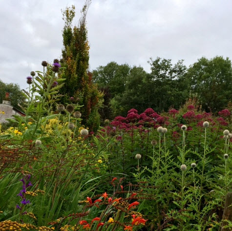 A riot of color in the gardens at Saltville
