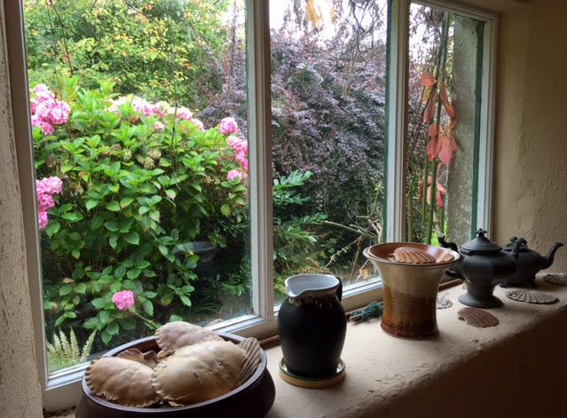 A bowl of shells adorns a window ledge inside the potting shed