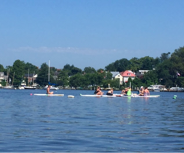 Paddleboarders gather for morning yoga on Spa Creek