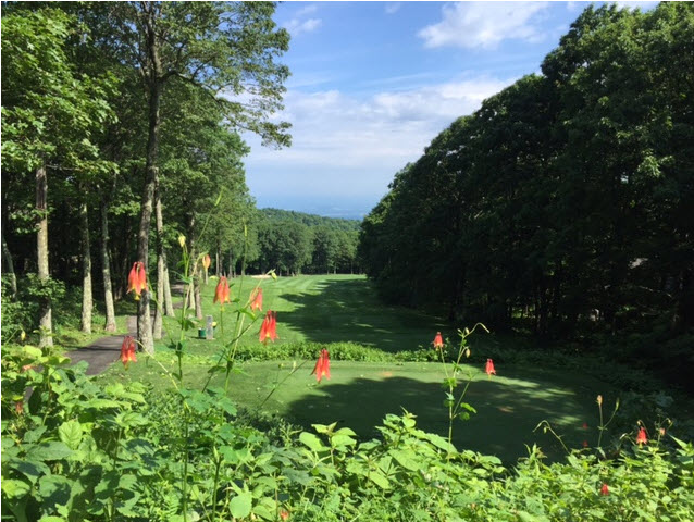 Devil's Knob golf course